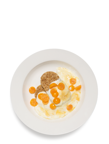 The Sweet Goose